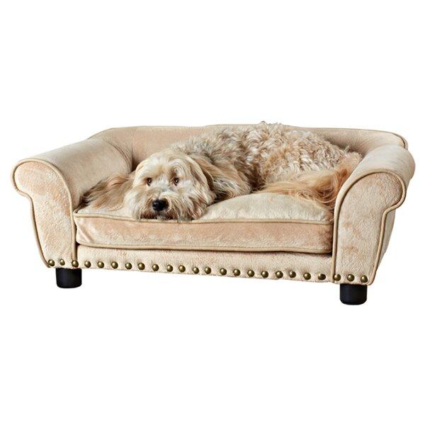 Sofa Dog Beds You'll Love in 2020   Wayfa