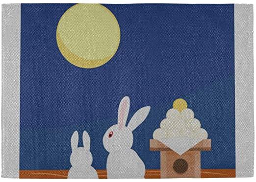 Amazon.com: QiyI Cool Placemats Rabbit Moon Light Night 12x18 Inch .