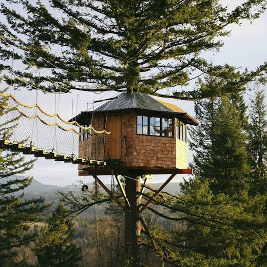 Wanderer Builds a Unique Tree house | LEED Poin