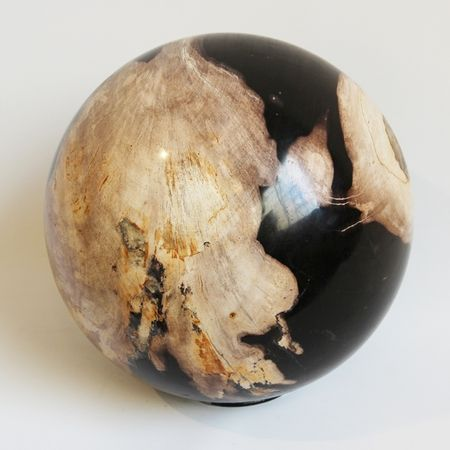 Petrified wood Sphere. MIXfurniture.com | Petrified wood, Wood, Sto