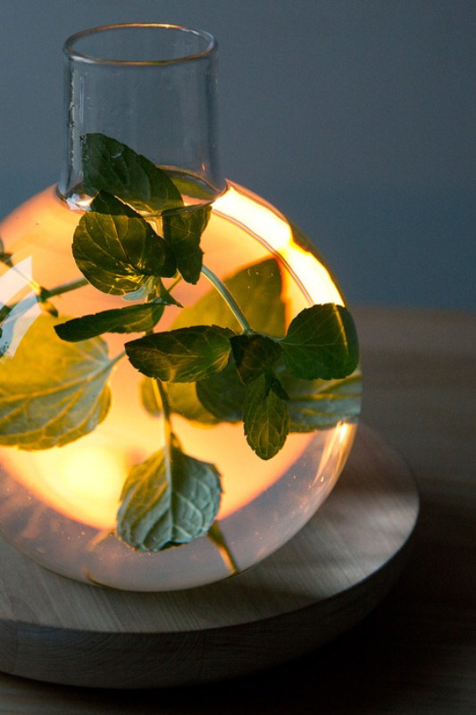 Unusual Liquid Light As A Still Life Reinterpretation - DigsDi
