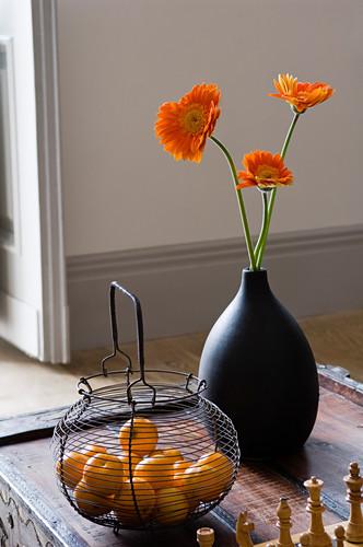 Black vase with orange gerbera and … – Buy image – 11016493 .
