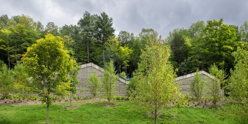 Birdseye Design clads Vermont dwelling in salvaged wooden boar